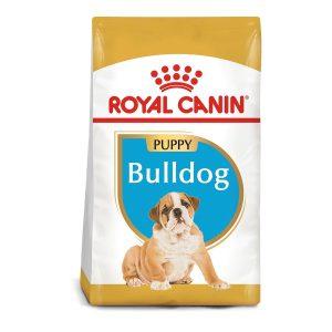 Royal Canin Bulldog Inglés Cachorro