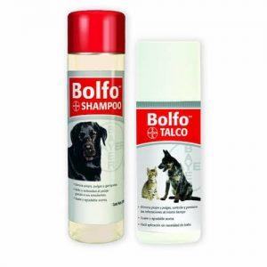 Bolfo Shampoo Antipulgas Y Talco Antipulgas Bolfo Bayer Kit