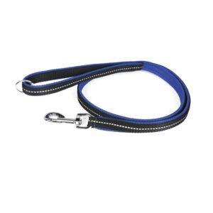Summer-leash-blue-3
